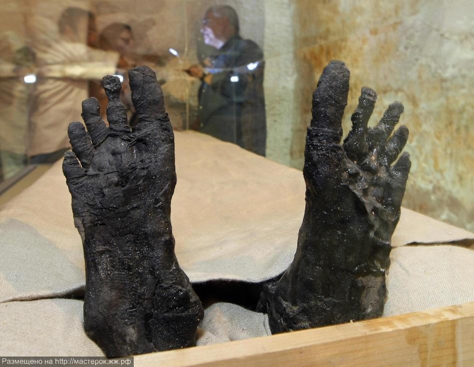 The feet of Pharaoh Tutankhamen are disp