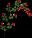 «denim»  0_94901_59c80983_S