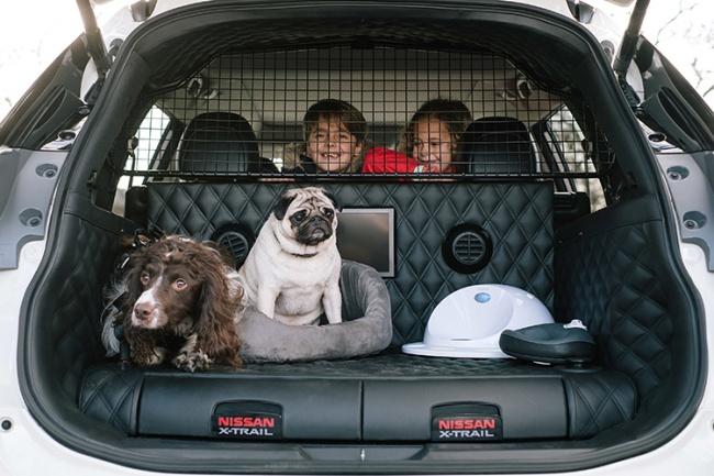 Наконец-то придумали автомобиль для комфортных поездок сдомашними животными (5 фото)