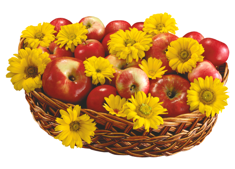 basket of apples and flowers.png