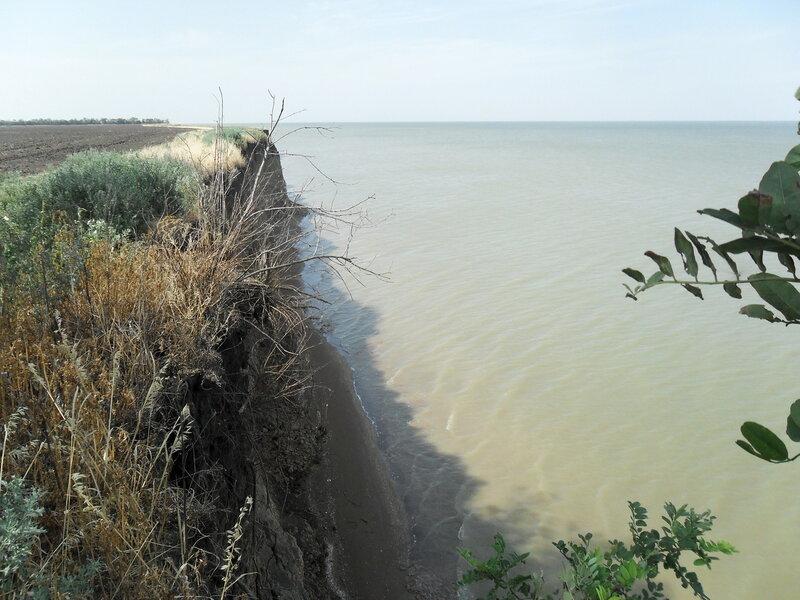 На обрыве, побережье Азовского моря, 3 августа 2012