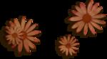 kimla_DN_flowers2_sh.png