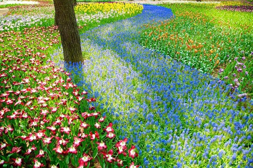 Живописный японский парк Хитати Кайхин 0 1422eb 7baed9fe orig