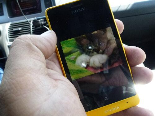 Sony Xperia Go фотография