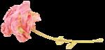 «victorian rose» 0_94a7f_7496c6f4_S