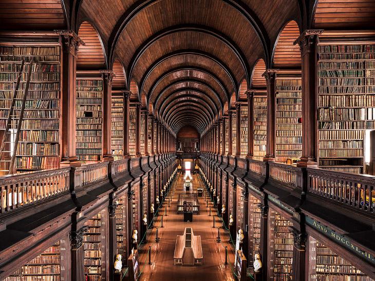 Самые красивые библиотеки мира (17 фото)