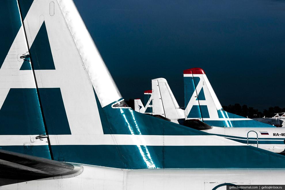 3. Основу авиапарка «Ангары» составляют проверенные временем машины КБ Антонова: семь Ан-24 и три са