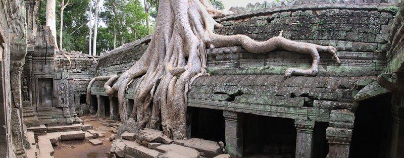 Храмы Ангкора, Храм Та Пром