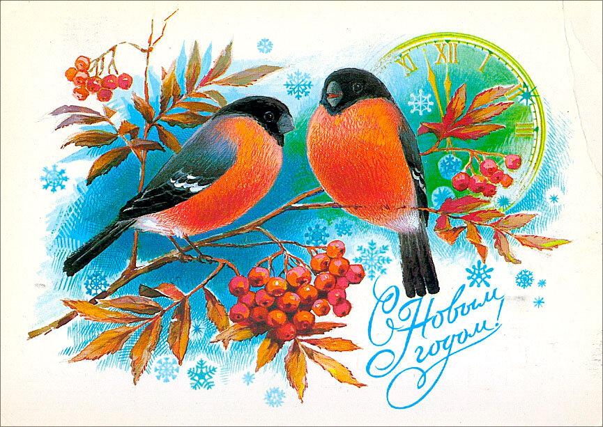 Открытки с новым годом со снегирями, ватсапе каждый