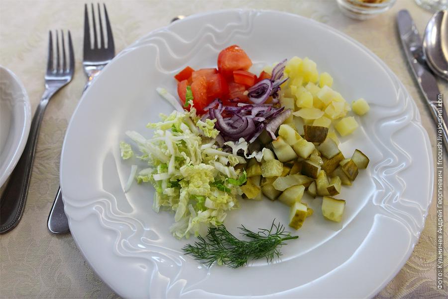 Салат «Деревенский» (картофель, соленый огурец, красный лук, капуста пекинская, растительное масло). чем кормят на речном теплоходе фотографии