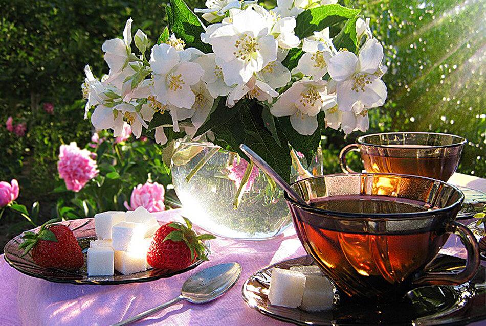 Открытки доброго летнего утра и радужного настроения