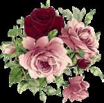 Винтажные цветы на прозрачном фоне