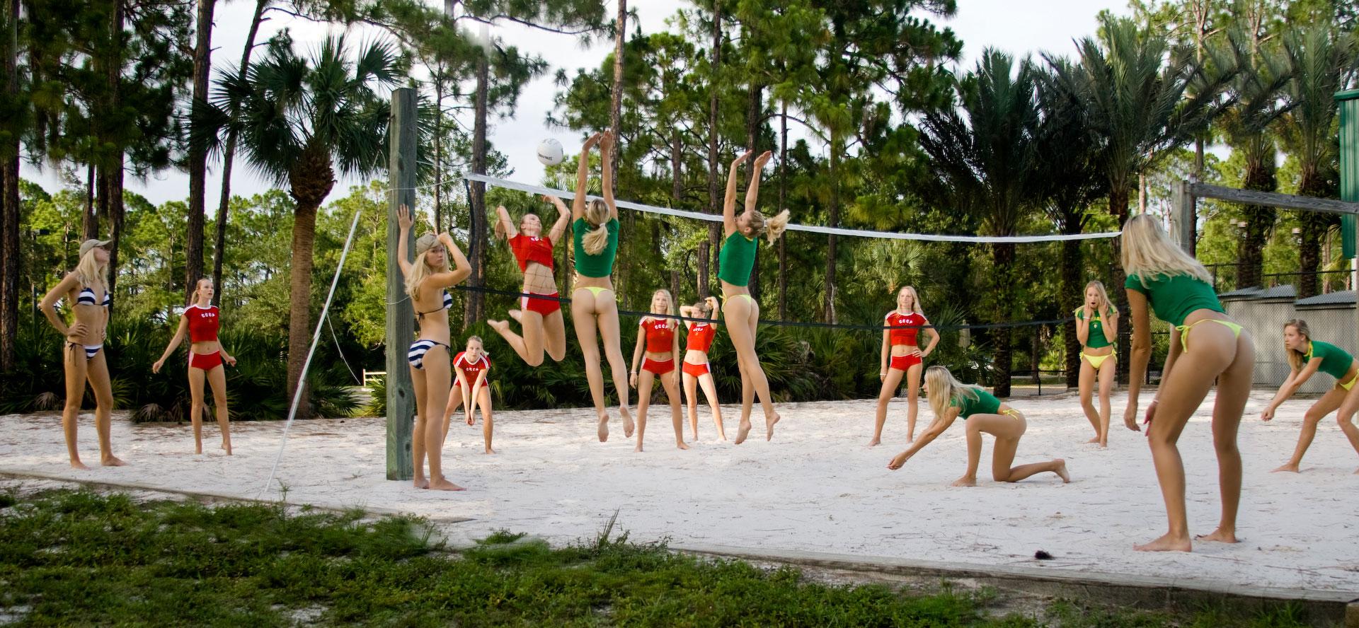 Сексуальные девчонки волейбол 24 фотография