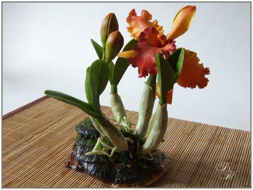 Орхидея слеплена из японской