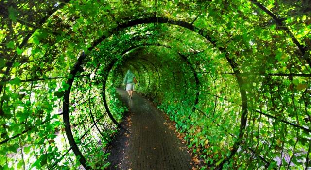 Сад отруйних рослин Альнвік