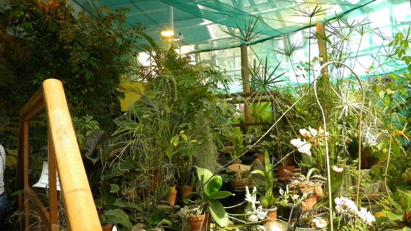 джунгли на ВВЦ