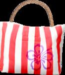 NLD SATSP Bag.png