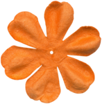 KAagard_CircusMagic_Flower1.png