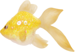 NLD Fish 4.png
