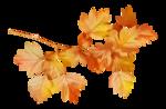 AutumnMelody_by GalinaV_el (38).png
