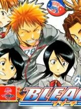 ������ ���� (Bleach)