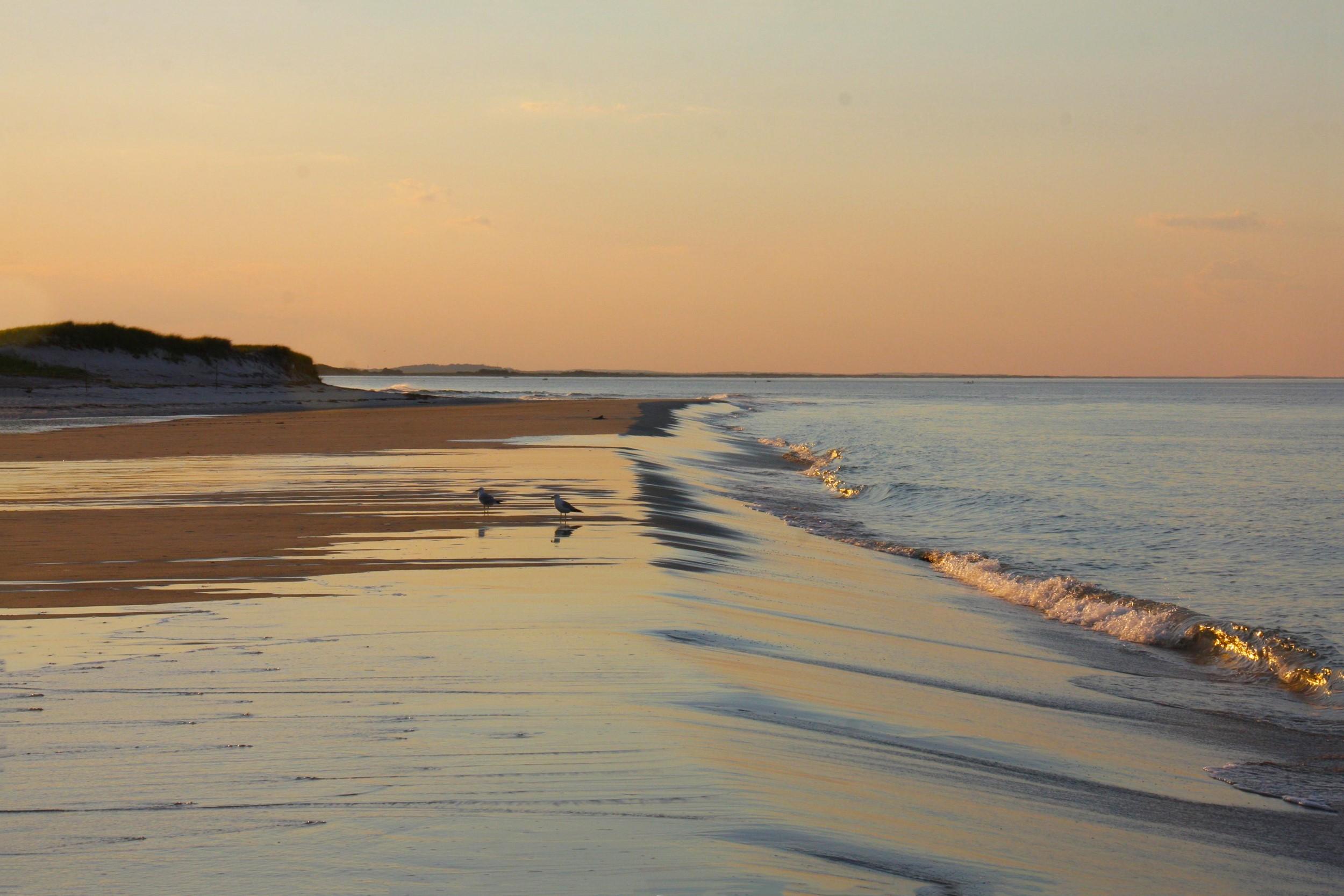 13 пляжей в городе и на заливе The Village 54