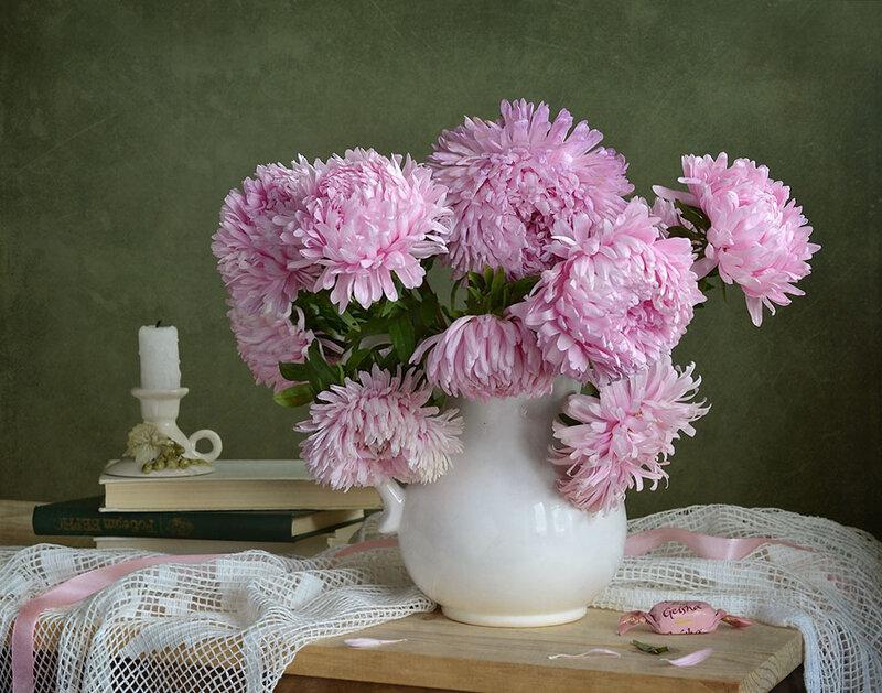 Розовые астры