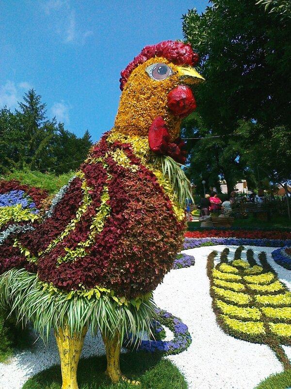 Выставка цветов на Певческом поле к Дню Незалежности 2012