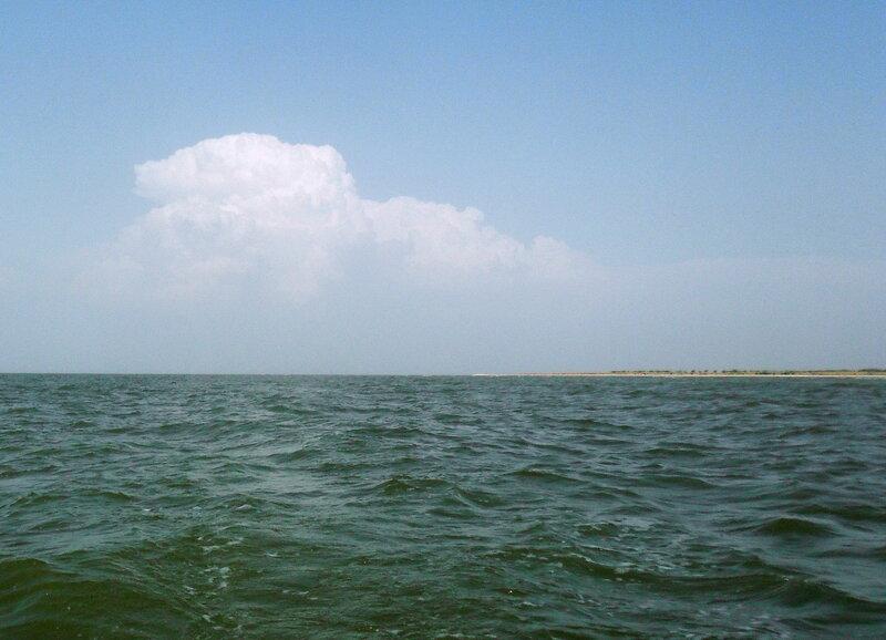 В море, у берегов Ачуевской косы