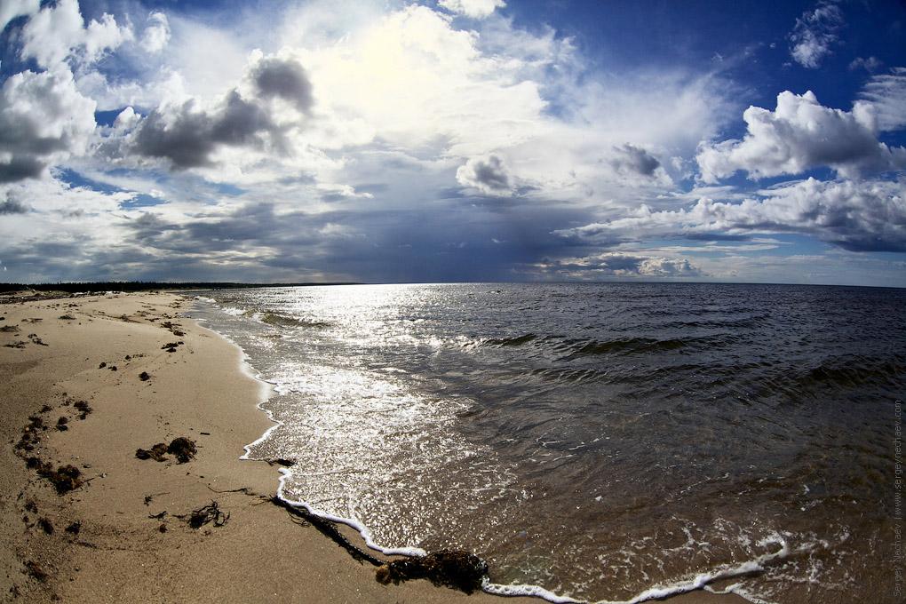 исключительные белое море фото берега бургеры
