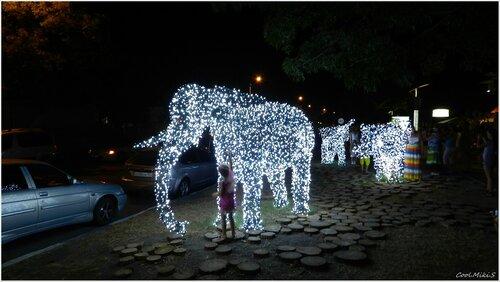 Девочка и слон.