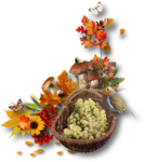 Autumn Melody_by GalinaV_cluster (3).png