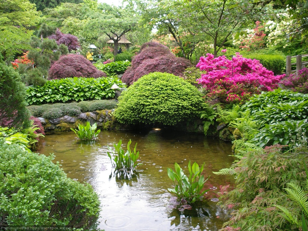 The butchart gardens for Japanese garden bushes