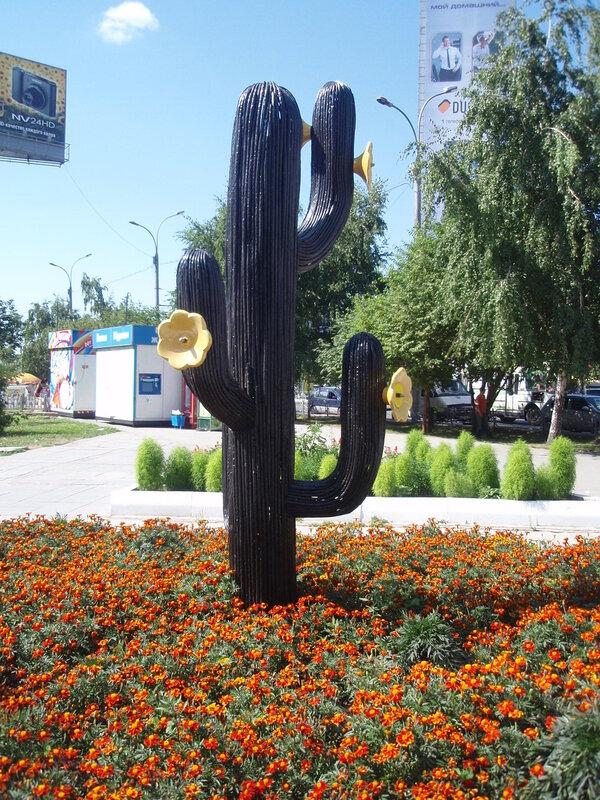 Новосибирский кактус