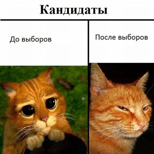 http://img-fotki.yandex.ru/get/6605/163169797.5/0_97988_4e8812a5_L.jpg