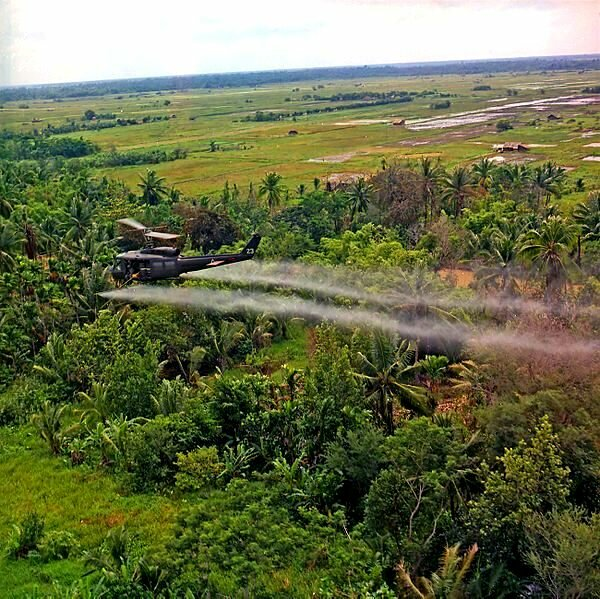 the cause and effect in the use of agent orange in vietnam 1962 by the us military The history of agent orange use in vietnam between 1962 and 1971, the united states military sprayed there would be an almost immediate negative effect on.