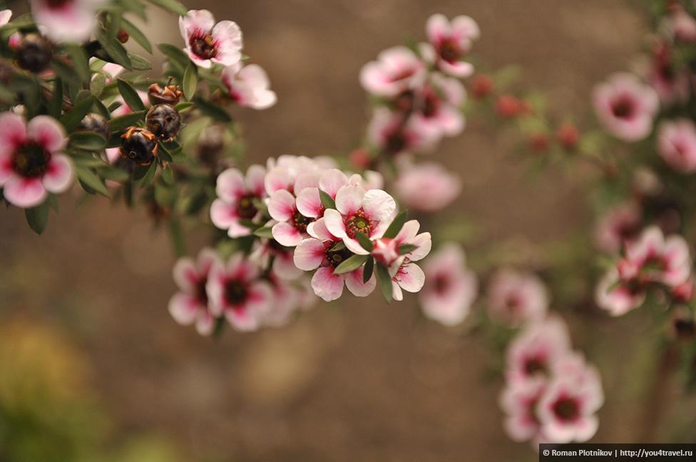 0 1919c6 4b0633f7 orig День 212 213. Прощай, Колумбия! Ботанический сад в Боготе