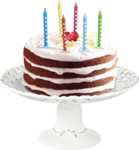 priss_Birthday_cakecluster.png