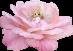 «Lisete_Rosa» 0_8e840_9c44dee5_S