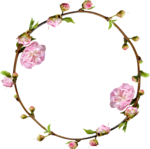 Lilas_Greedy-Pink_elmt (89).png