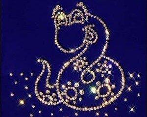2013 год по китайскому календарю— год Фиолетовой   Змеи