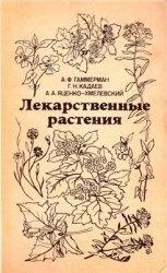 Книга Лекарственные растения (Растения-целители)
