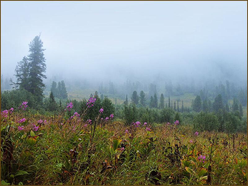 Облако ползёт по долине