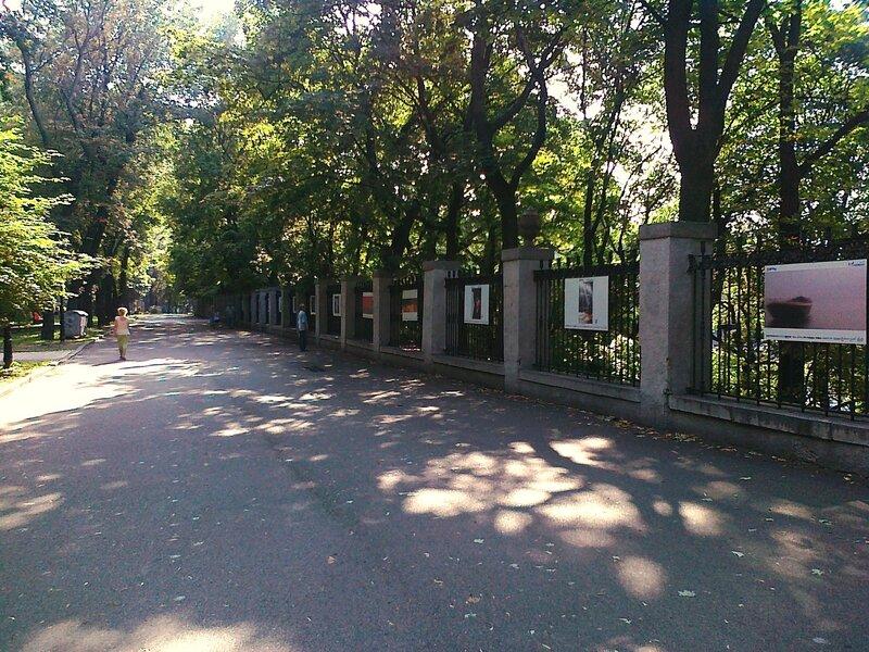 Выставка фотографий в Мариинском парке