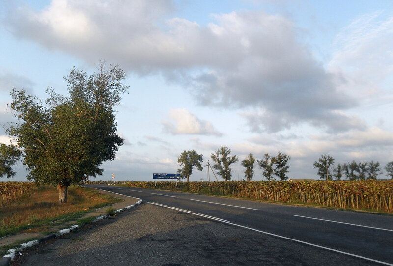 У поворота на Приморский, 21 августа 2012, 07:55