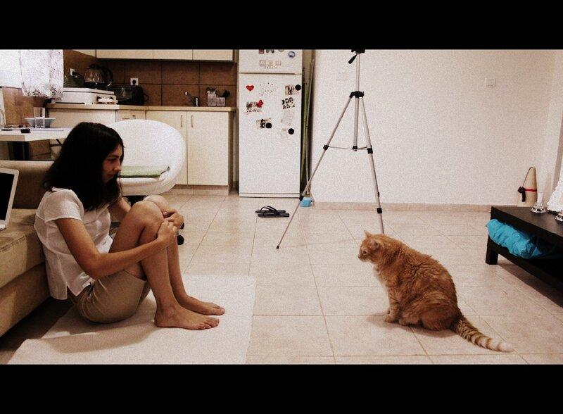 Фильм ужастик кот