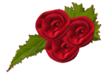 CR_ASTIC Flower 1.png