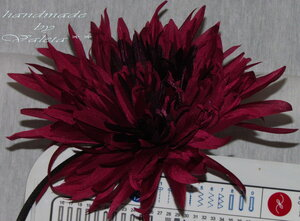 Астры и хризантемы - Страница 3 0_62f8d_a11d35a7_M