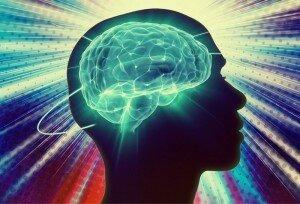 Ученые: мозг любит учиться на своих ошибках