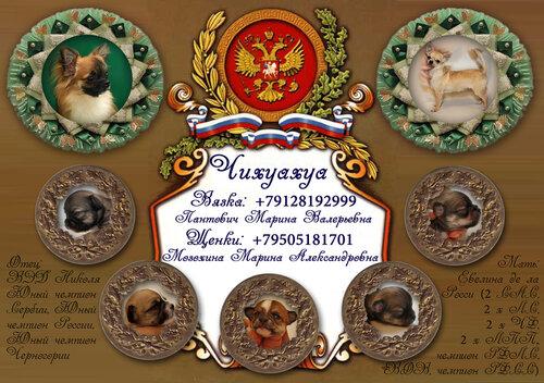 http://img-fotki.yandex.ru/get/6606/123267211.10/0_acd92_346b5697_L.jpg